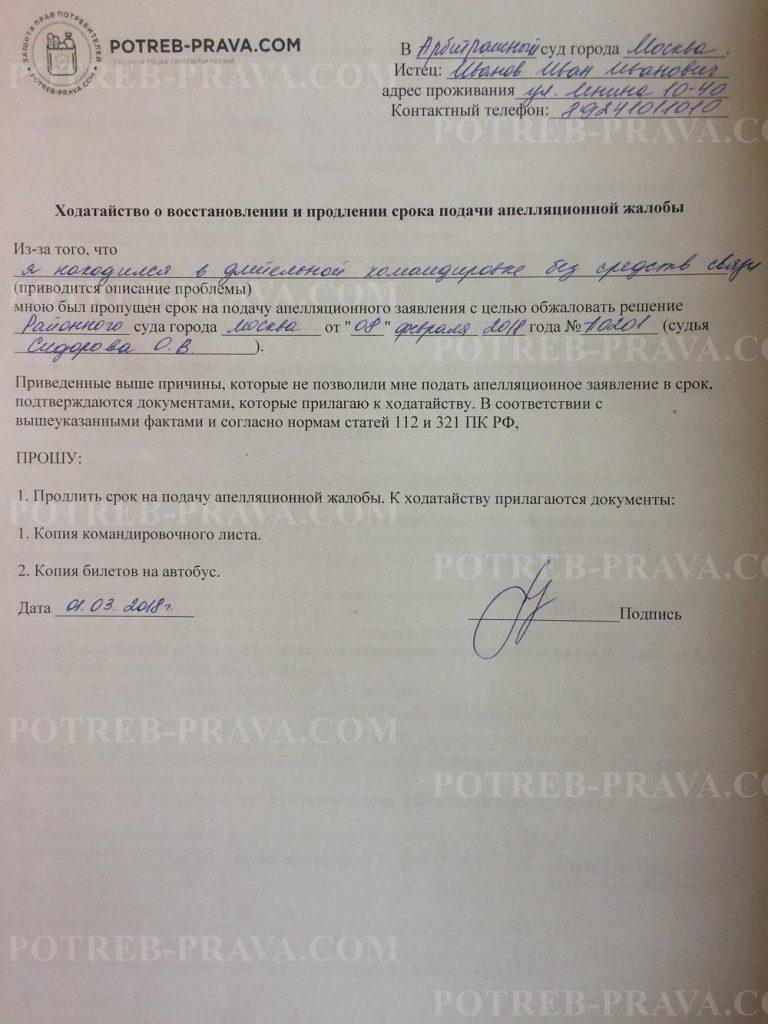 Пример заполнения заявления о продлении срока подачи апелляционной жалобы