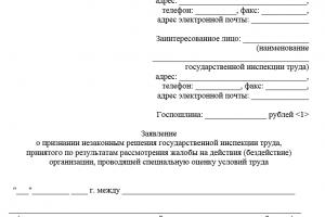 Документы для подачи в трудовую инспекцию о невыплате