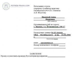 Акт проверки бухгалтерии образец госпошлина на регистрацию ип ростов на дону