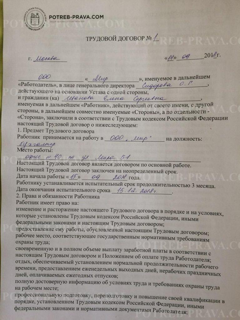 Пример заполнения трудового договора (1)