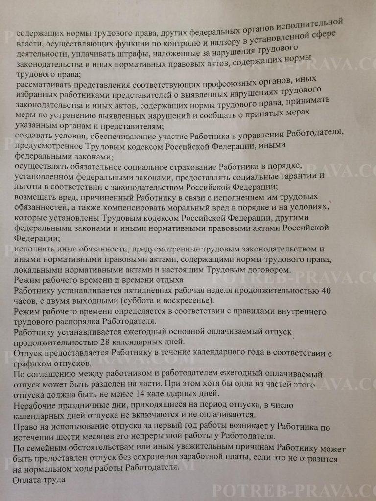 Пример заполнения трудового договора (4)