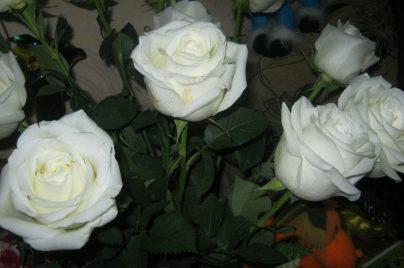 Можно ли вернуть цветы в магазин?