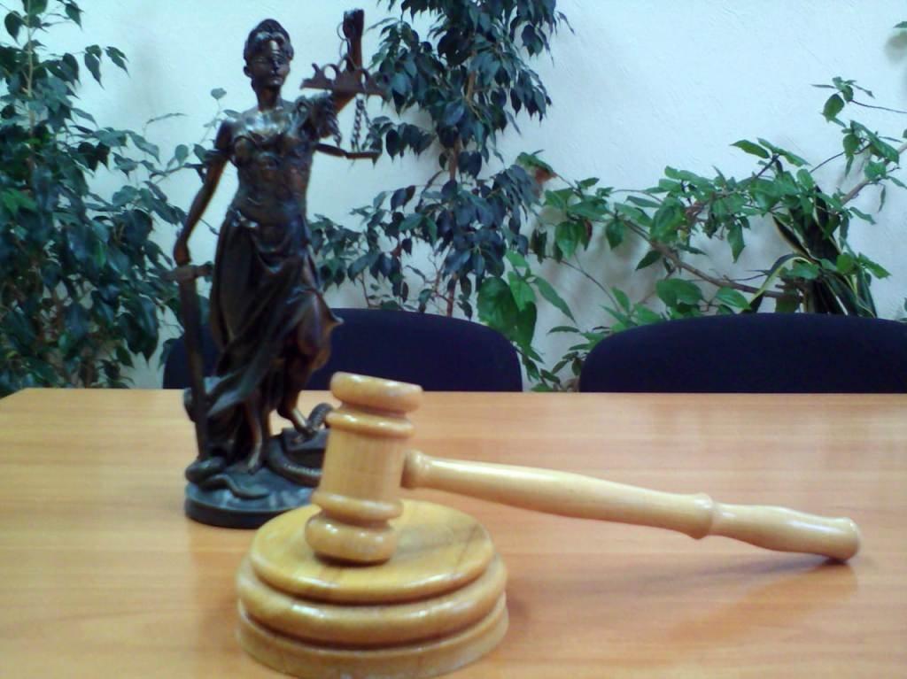Встречный иск в арбитражный суд заполненый образец