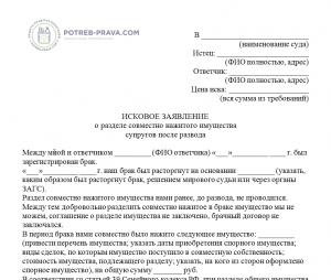 Изображение - Подаренная квартира при разводе Isk-v-sud-o-razdele-sovmestno-nazhitogo-imushhestva-suprugoami-posle-razvoda-300x254